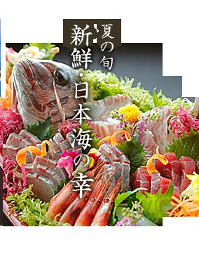 夏の旬 新鮮・日本海の幸